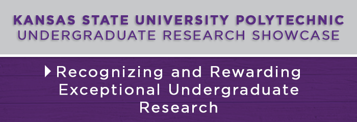 Undergraduate Research Banner